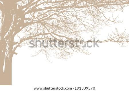 alone tree silhouette vector