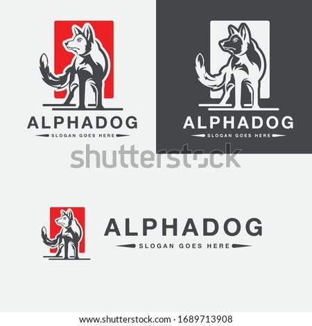 alpha dog logo templates vector