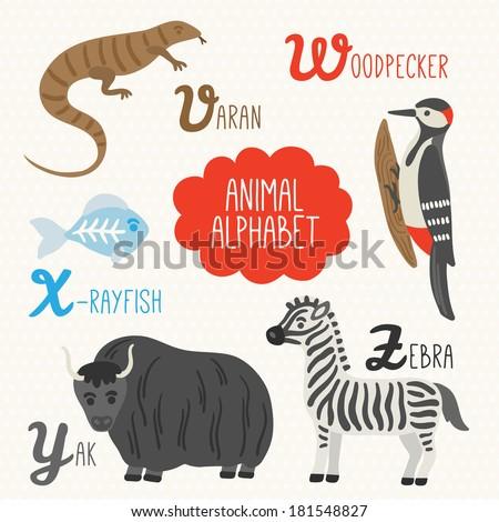 Alphabet for kids with animals. Letters V, W, X, Y, Z. Varan, Woodpecker, X-ray fish, Yak, Zebra