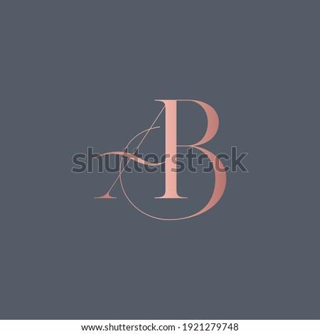 alphabet letters monogram icon logo BA or AB Zdjęcia stock ©