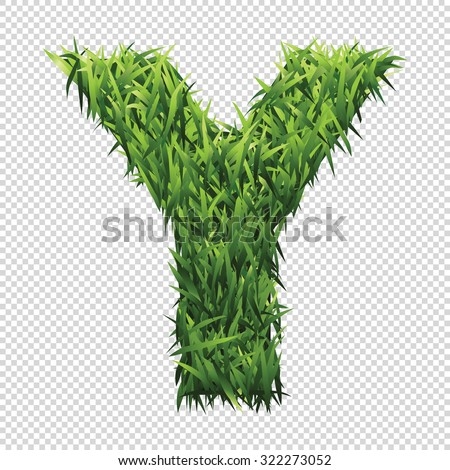 alphabet y of green grass a