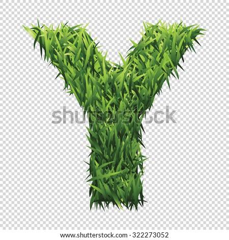 alphabet y of green grass a