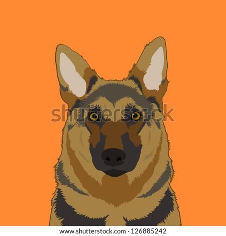 Alsatian, The buddy dog
