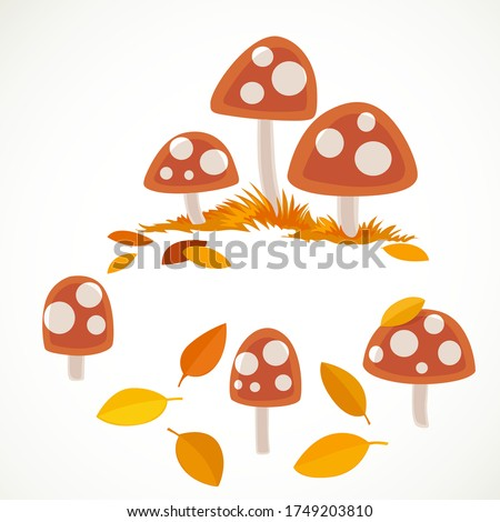 amanita with yellow leaves