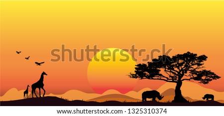 amazing sunset and sunrise