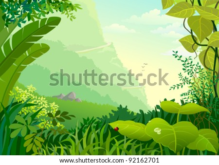 amazon jungle trees and