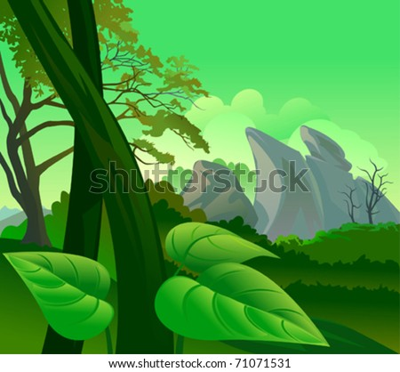 amazon rain forest flora and