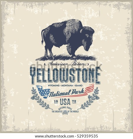 American bison, national Park Yellowstone, vintage, illustration, vector