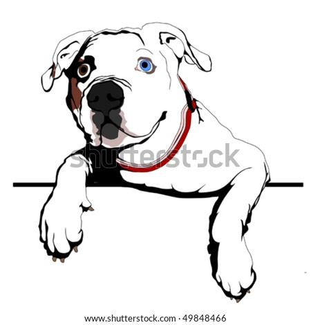 American bulldog vector - photo#2