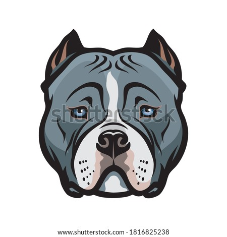 American Bully dog isolated vector illustration Foto stock ©