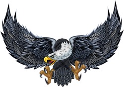 American eagle. American icon and symbol of freedom