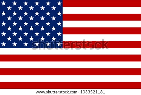 american flag vector image of