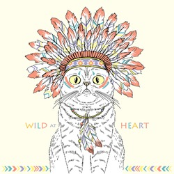American Indian cat in war bonnet, native american poster, t-shirt design, hand drawn animal illustration