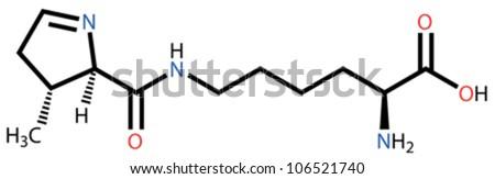 Amino Structural Formula Structural Formula