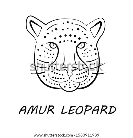 Amur leopard face in simple black and white style, vector illustration