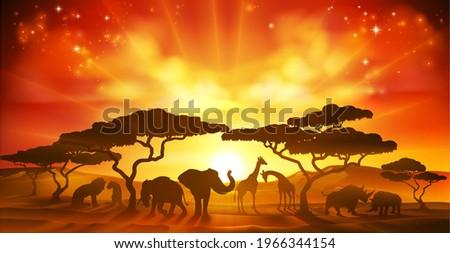An African savannah landscape scene with safari animal silhouettes  Stock photo ©