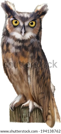 An eagle owl sitting on the log isolated on white background Vector