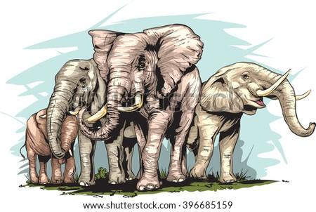 an elephant's herd