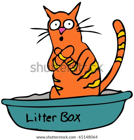 An image of a cat embarrassed using the litter box.