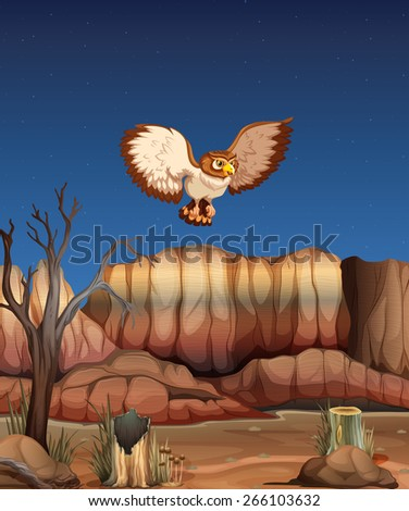Stock Photo An owl flying over a dessert