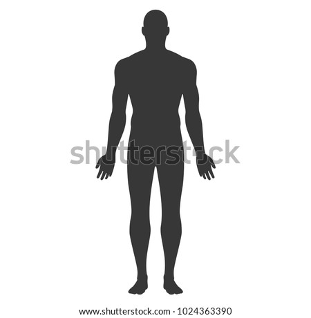 Anatomical Position Anterior View Male Body Vector Silhouette.