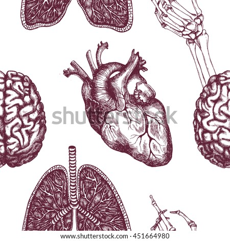 anatomical seamless pattern