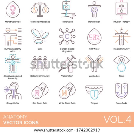 Anatomy icons including menstrual cycle, hormone imbalance, transfusion, dehydration, infusion therapy, human atlas, cell, carbon based organism, innate immunity, adaptive acquired, collective, tears.