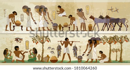 Ancient Egypt frescoes. Agriculture, workmanship, fishery, farm. Hieroglyphic carvings on exterior walls of an temple. Life of egyptians Stock photo ©