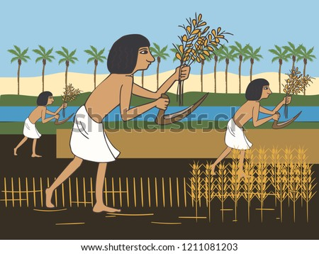 ancient egyptian peasants harvest on the Nile bank, colorful vector cartoon illustration of first farmers