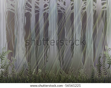 ancient magical forest