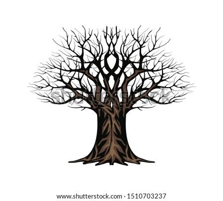 ancient tree vector  hand drawn