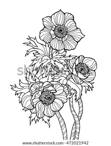 Anemone Flowers Vector Floral Illustration Monochrome Dark Grey Blue Beige Color