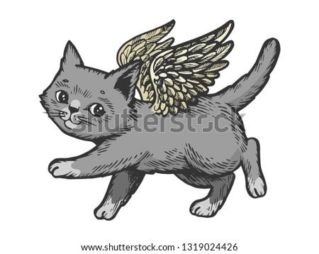 angel flying kitten color