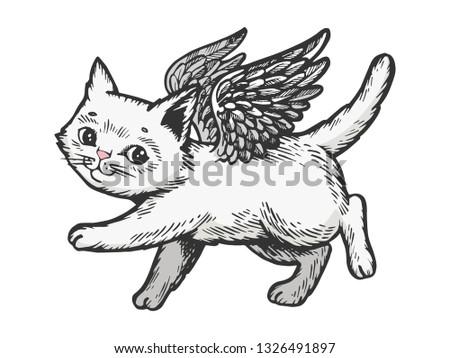 angel flying kitten color white