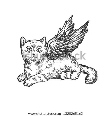 angel flying kitten sketch