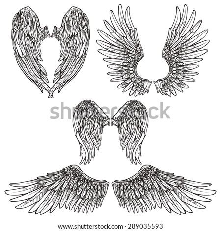 angel or bird wings abstract