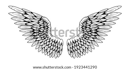 Angel wings. Bird wings. Design element for tattoo. Element for the logo.