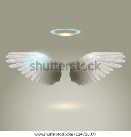 Angel wings eps10 vector