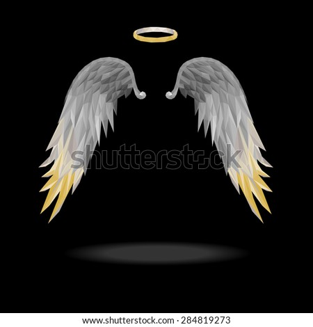 angel wings with floating