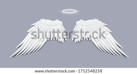 angels white feather wings with