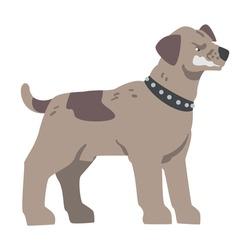 Angry Aggressive Pedigree Dog Baring its Teeth Vector Illustration
