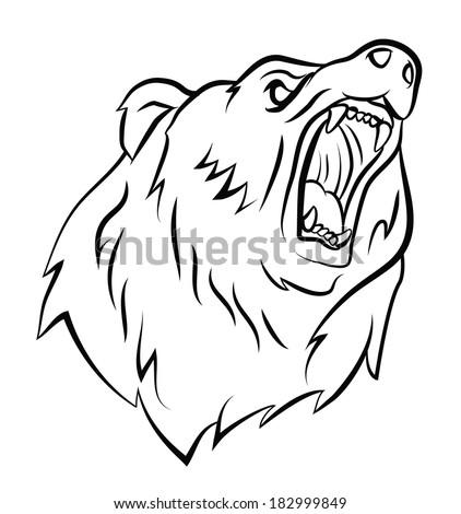 Bearing Drawing Angry Bear Stock Vector