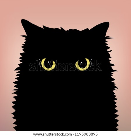 angry black cat with big eyes