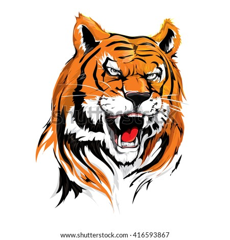 angry head tiger illustration