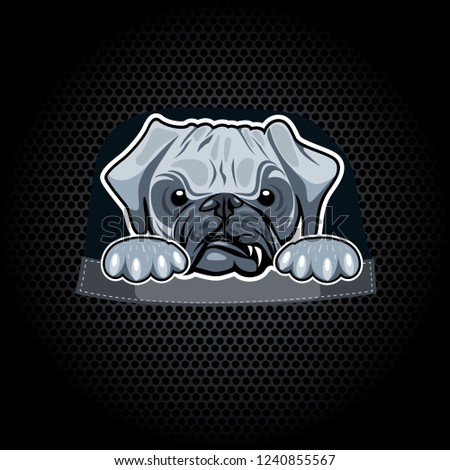 982d702d1 Angry pug in a pocket. T-shirt template