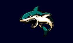 Angry shark vector design. Shark vector logo