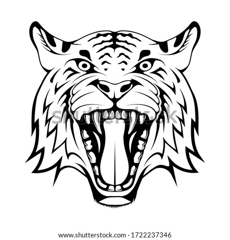 angry tiger face  isolated on