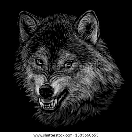 angry wolf monochrome  black
