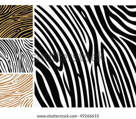 animal print background. Background texture of zebra