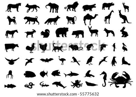 Animal black silhouettes